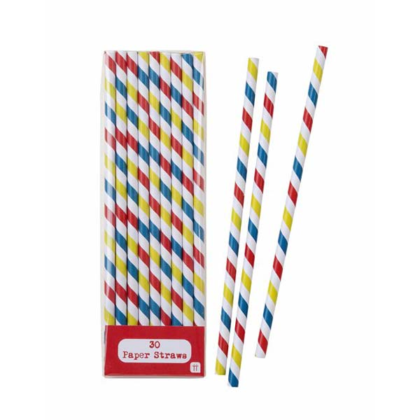 Multi-coloured Chevon Straws